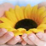 Venerdì 17 /11 nuovo incontro Gruppo Familiari per il Progetto di vita, presso INCERCHIO